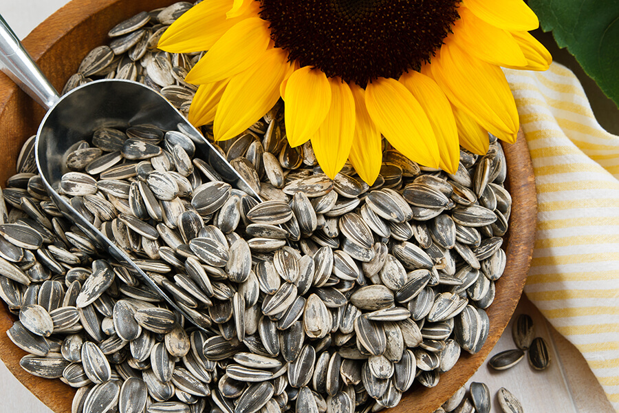 C60-France-Antioxydant-sunflower-seed-vitamine-E