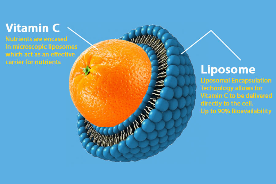 C60-France-Antioxydant-vitamin C liposomal