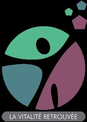 Logo C60 France Fullerène